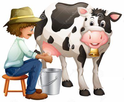 leite: saquinho, garrafa ou caixinha