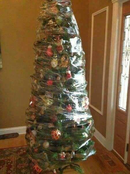 opções de árvores de Natal seguras