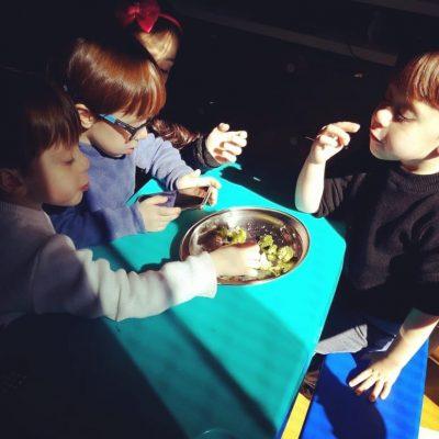 o que meus filhos comem